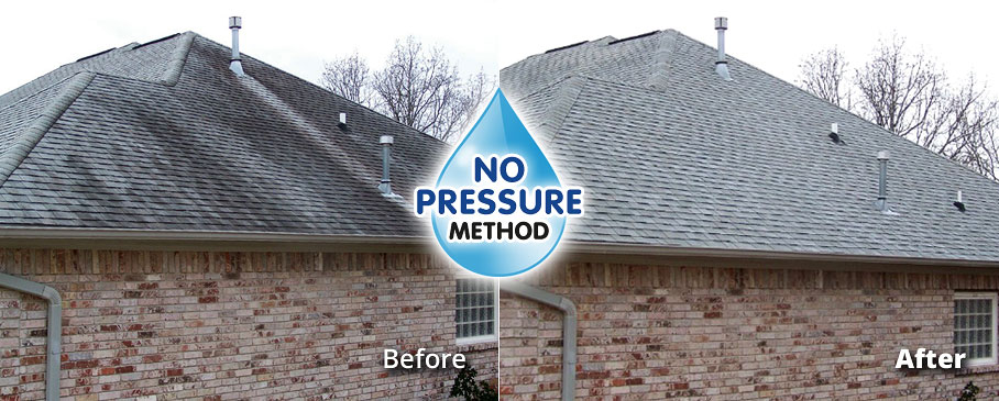 No Pressure Roof Stain Cleaning